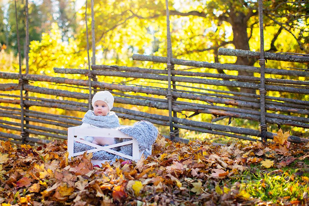 emmelifoto höstfotografering barnfotograf