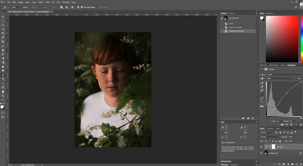 Redigering i photoshop av Villes porträtt i busken